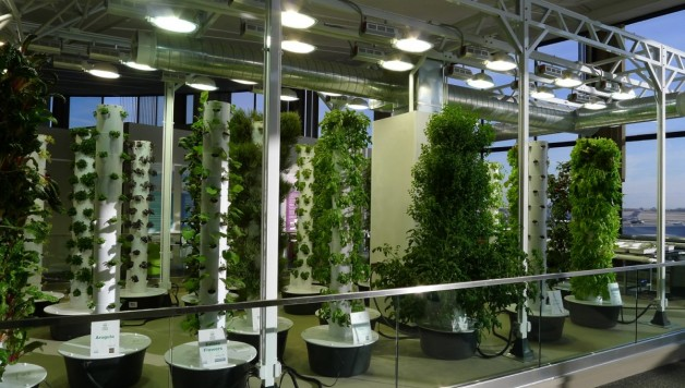 Indoor-Grow-Lights-Vertical-Gardening