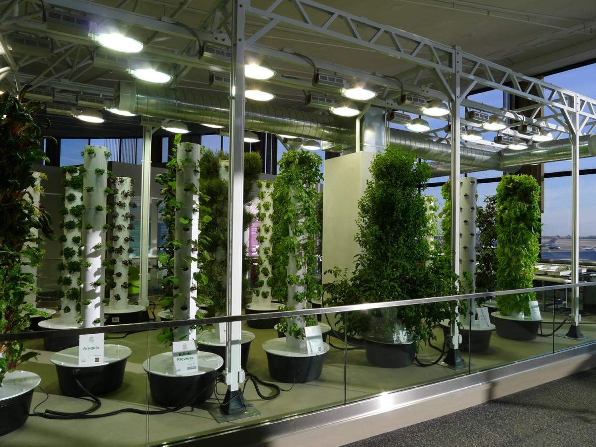 The Science Of Grow Lamps  PowerHouse Growers