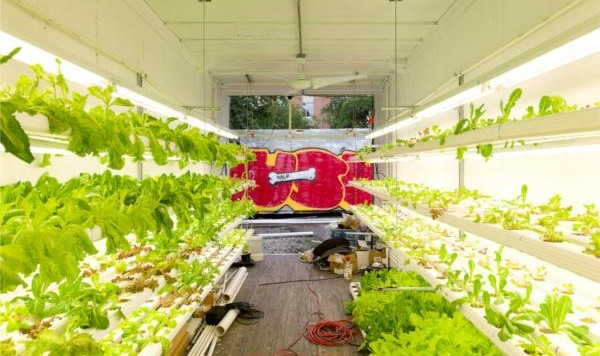 hydroponic-retrofits-shipping-container-urban farming