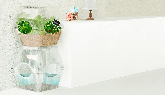 aqualibrium-garden-automated-hydroponic-gardening-system