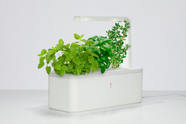 Click And Grow Automated Hydroponic Gardening System