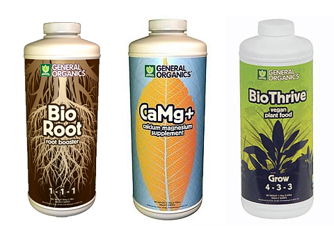 hydroponic-gardening-wheatgrass-nutrients