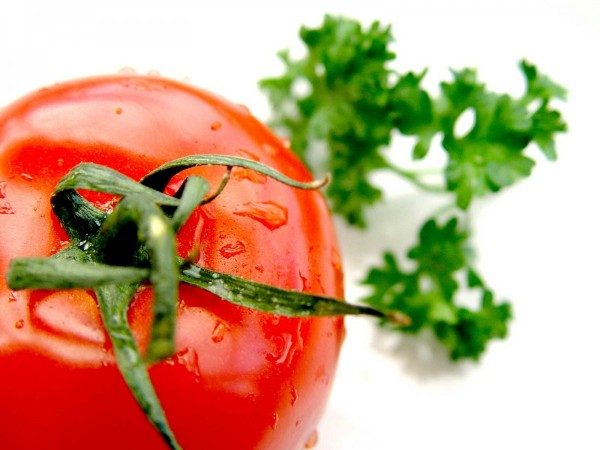 commercial-hydroponic-food-production