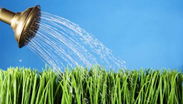 innovative-water-saving-methods-in-hydroponics