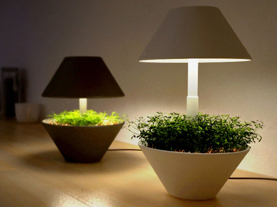 Indoor growing lamps. Image via EcoFriend.com.