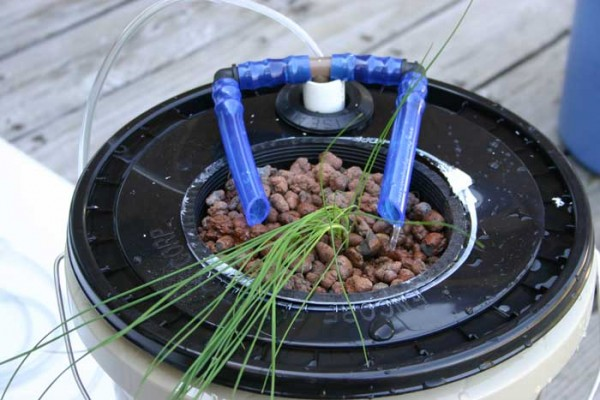 diy-home-hydroponics-soilless-gardening