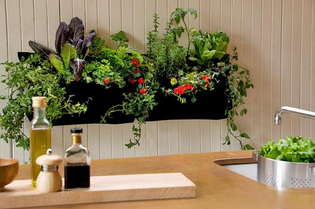 indoor-gardening-health-benefits