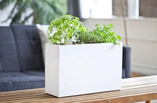 modern-sprout-indoor-gardening-solution