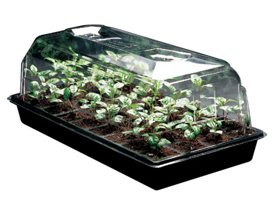 mondi-mini-greenhouse-germinate-hydroponic-seedlings