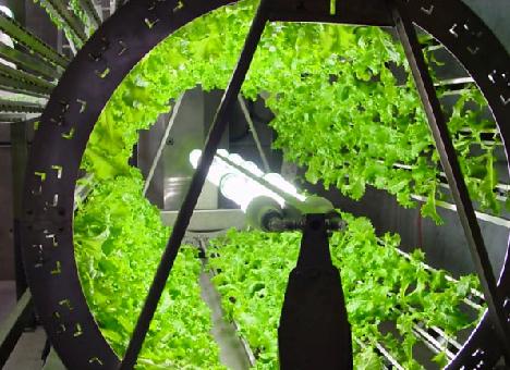 omega-hydroponics-system