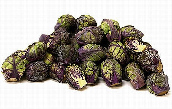 winter-indoor-gardening-tips-growing-brussel-sprouts