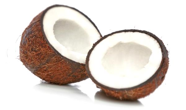 Benefits of Coconut Coir as a Grow Medium