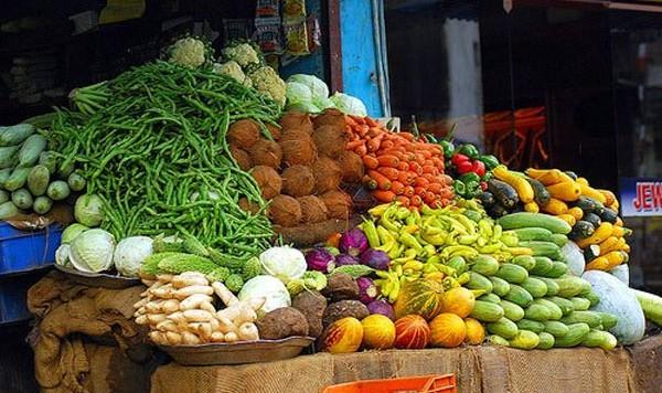 hydroponics-solves-food-security