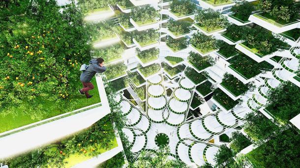 hydroponic-vertical-farming-revolution