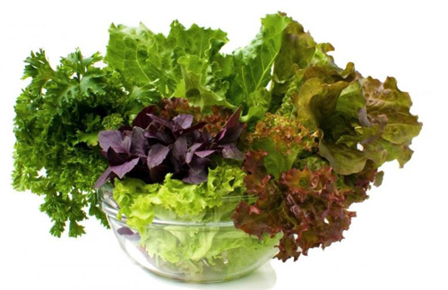winter-gardening-tips-growing-leafy-greens