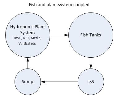 ColoradoAquaponics_Fish_plant_system_coupled_pHhydroponics