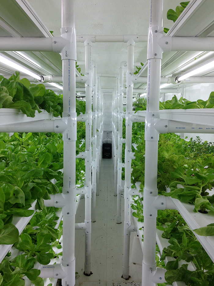CropBox_food_systems_PowerHouseHydroponics