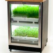 UrbanCutlitvator_residential_hydroponics_PHH